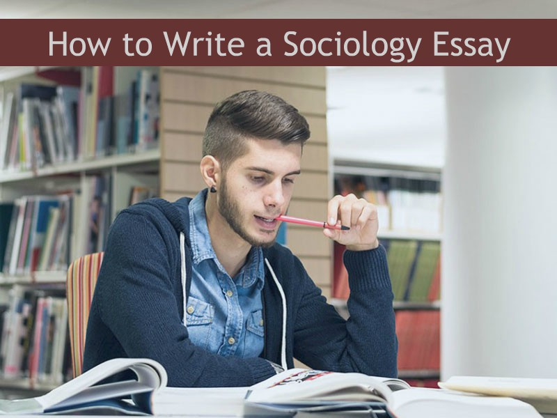Social Worker Essays