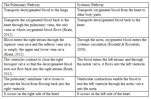 Pulmonary Pathway versus the Systemic Pathway